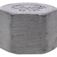 1/8 BSPP F Hex Cap 150Lb 316SS